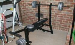 $100 vitamaster weight bench with weights