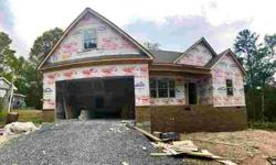1200 Springview Dr Chattanooga Three BR, New construction