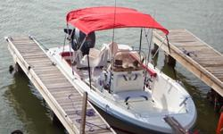 19 Foot Polar Boat for sale
