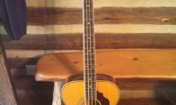 $200 Ibanez Sage series acoustic/electric bass