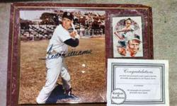 $200 Ted Williams Photo