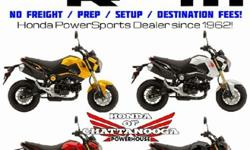 2015 Honda Grom For Sale - Chattanooga TN / GA / AL area