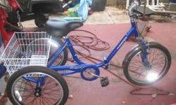 $250 adult tricycle