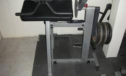 $350 Body-Solid Cam Series Biceps & Triceps machine
