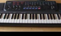 $40 Casio CTK 500 electric keyboard (Pomeroy)
