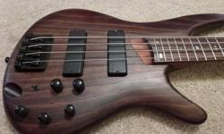 $500 BASS Guitar Ibanez SR600 with AMP and many free Extras