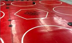 "$5,000 MMA/Wrestling Mats 36'x38'x1.5"" & 90' of Wall Mats"