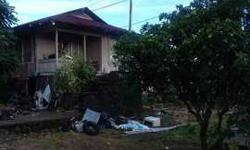 721 Hinano St Hilo Five BR, this home is a fixer upper.