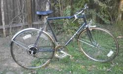 $75 Old School 10 Speed (Norman by College)
