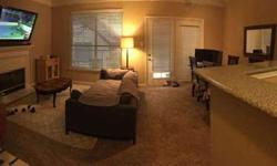 942 sq. ft. Apartment by Downtown Austin