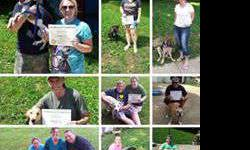 AKC Star Puppy Classes and AKC CGC Classes
