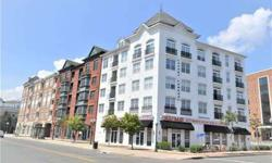 Fabulous Rental in Downtown Stamford