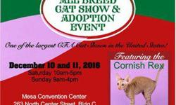 It's Feline A Lot Like Christmas Cat Show and Adoption Event