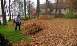 Leaf Removal Jo.CO Area [phone removed]