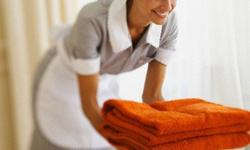 Maid/Cleaning Service----Valentine Day Deals in Your Area