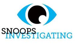 Need a Private Investigator