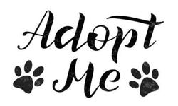 Pet Adoption Event Co-op Dover Sept 1, 2018 8am-12pm