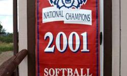 University of Arizona Sports Memorabilia Banner