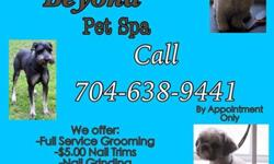 Wags, Bath and Beyond Pet Spa